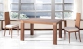 mobilier-salle-a-manger-tables-table-120-165-cm